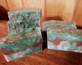Cranberry Spruce Soap for Men, 3 Bars, Cold Process, Spruce, Cedar, Fir Essential Oil, Australian Red Reef Clay, Organic Oatmeal, Bulk Soap