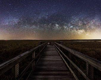 "Paynes Prairie, Observation Deck, Milky Way, Nighy Sky, Nature Photography, Large Wall Print, Fine Art Photography - ""4AM"""