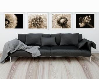 Dandelion print set of 4 prints. Dandelion wall art. Dandelion photo Dandelion wall decor. Dandelion poster. Black dandelion White dandelion