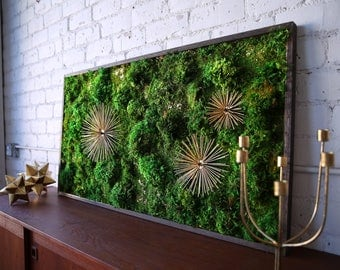 Bon Moss Wall Art ~ Moss Art Work ~ REAL Preserved Moss ~ No Maintenance  Required Moss
