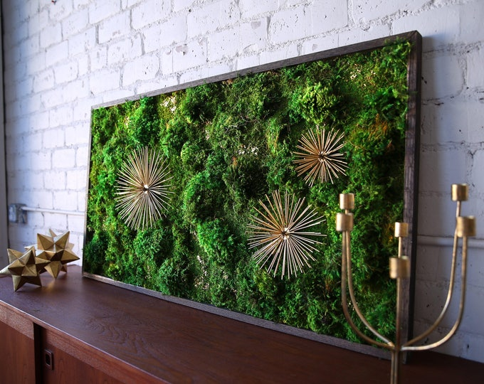 """Moss Wall Art ~ Moss Art Work ~ REAL Preserved Moss ~ No Maintenance Required Moss """"Living"""" Wall ~ 50x28"""" ~ """"Star Burst"""""""