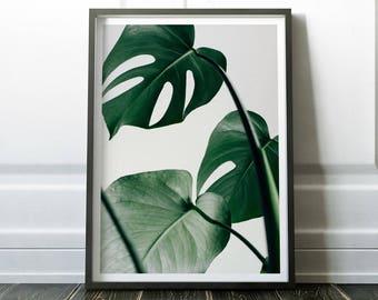 Monstera Print, Wall Art Print, Scandinavian Print, Scandinavian Wall Art, Minimalist Wall Art, Leaves Wall Art, Leaves Print, Minimalist