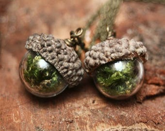 Real acorn pendant, botanical necklace, terrarium pendant, inspired by nature, real moss glass locket