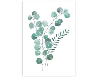Eucalyptus Leaves Print