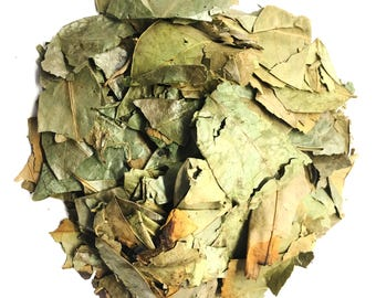 Soursop Leaves - Hojas de Guanabana Herbal Tea Value Pack (105 grams)