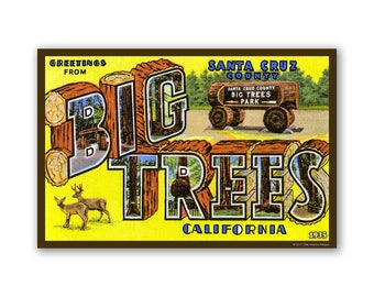 Santa Cruz Big Trees 1935 - On The Road To California