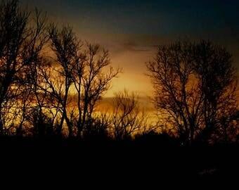 Fire in the Sunrise Sky