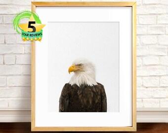 Eagle Print, Bird Print, Eagle Decor, Digital Print, Bird of Prey, Bird Prints, Eagle Bird Photo, Bird Wall Art, Nature Art, American Eagle