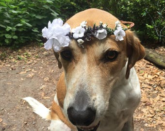 White and lavender flower crown