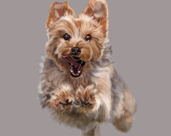 Cairn Terrier - Wait For Me