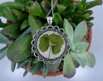 Genuine RARE 5 Leaf Clover Necklace [SP 011] / Stainless Steel / Lucky White Clover Pendant / Triforium Repens Gift / Good Luck Charm