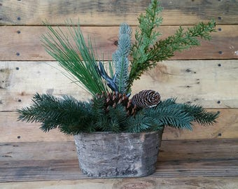 Rustic Evergreen and Pine Cones