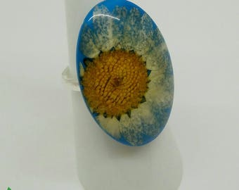 Real flower ring, resin ring, daisy ring, 925 sterling silver ring, adjustable ring