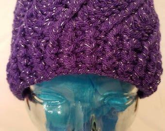 Sparkly Purple Beanie.