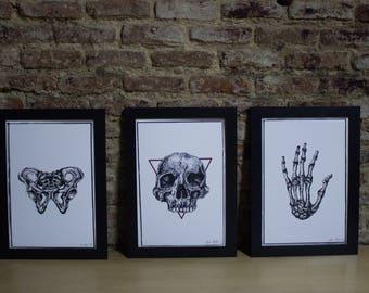 Mortem by Nuwanda Studio [Memento Mori]