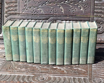 The Sisters Bronte -12 Hand Cut Volumes-The Thornton Edition 1924,bronte,book,collection,vintage,jane eyre, emily,set,old,reading,history,