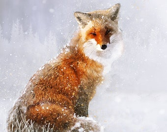 Snow fox wildlife love