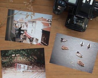 Birds and shopping cart, Postcard Set