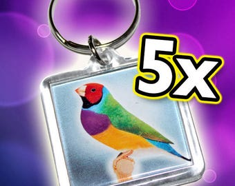 5 Keychains with Gouldians