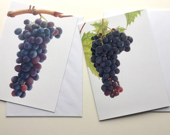 Grapes greetings cards