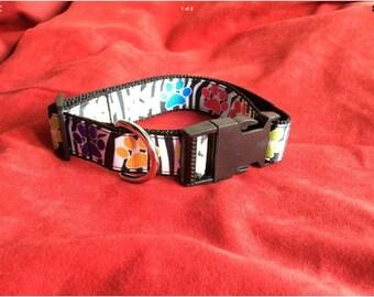 Medium dog collar adjustable novelty zebra/pawprint design