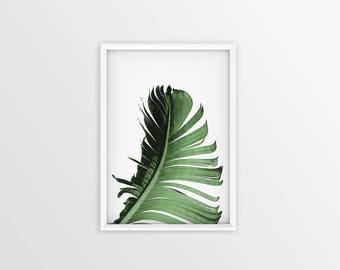Minimalist Summer Print, Banana art, Palm, Green, Wall Decor, nature Print, Pillow print