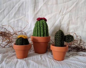 Crochet Succulets