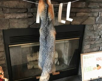 "47"" adironadack gray fox tanned fur pelt"