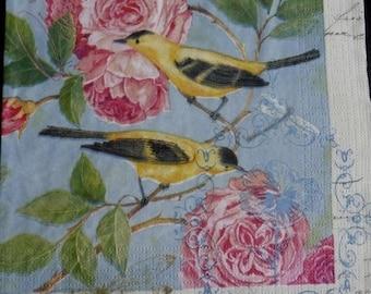 Birds paper towel