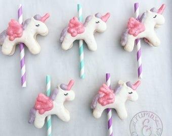 Half Dozen Flying Unicorn Ponies Macaron