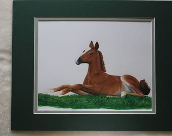 Original signed art, Foal