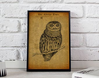 Owl Bird Vintage poster, Owl Bird wall art, Owl Bird Vintage wall decor, Owl Bird print