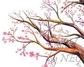 Dogwood Tree Watercolor Painting Fine Art Print.