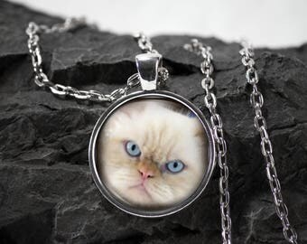 Cat Glass Pendant cat necklace cat jewelry photo pendant art pendant photo jewelry art jewelry silver glass jewelry