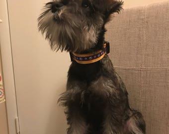 Deaf Dog Collar Etsy