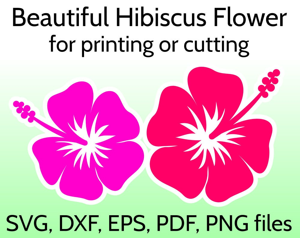 Download Hibiscus SVG Flower Cut File for Cricut & Silhouette Tropical
