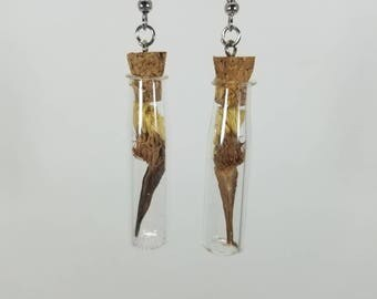 Vial dangle earrings