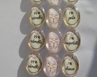 Set of 15 Cabochons 18 X 25 mm oval with their funny writing images