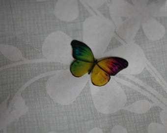 transparent Butterfly multicolored 2 x 1.2 cm, n75