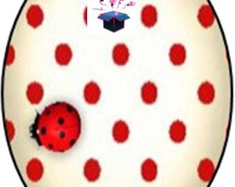 1 cabochon clear 10 x 14 mm Ladybug theme