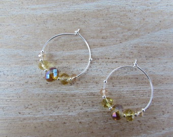 Small hoop earrings decorated with beautiful crystals