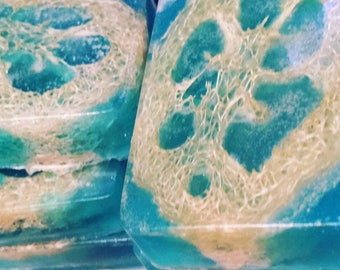 Sea salt loofah exfoliating bar