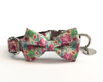 Percy & Co. The Clifton Dog Bow Tie Collar