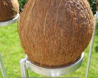 Mini Coconut Shy set. 3 coconut shy posts and 10 wooden balls