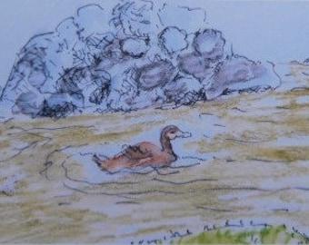 Ducks in a lake.