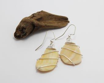 Silver Wrapped Cream Shell Earrings