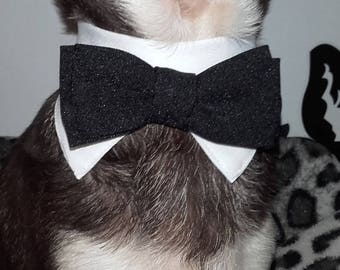 Top of Tuxedo bow tie for dog or cat