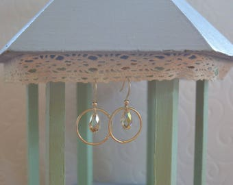Swarovski Crystal and silver circle drop earrings