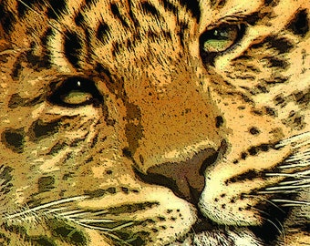 MC14806 Leopard Cub