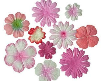 Lot 10 flowers paper shades pink ScrapBerry's new!